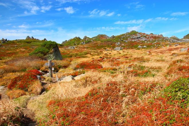 トムラウシ山南沼キャンプ指定地
