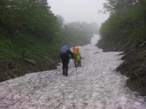 トムラウシ山 コマドリ沢出合 雪渓