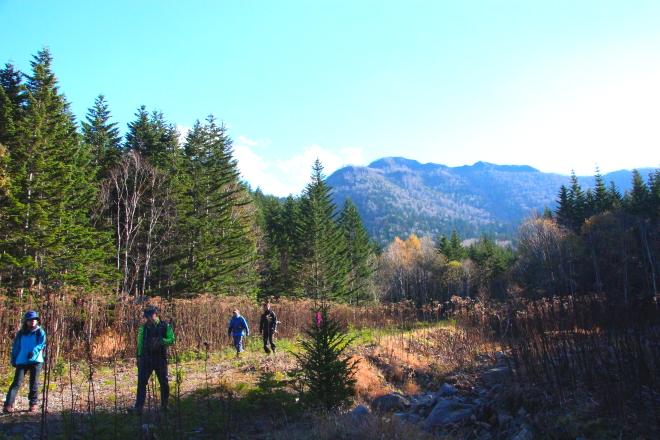 クマネシリ岳 登山口付近より頂上を望む