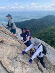 剣山 山頂の斜面